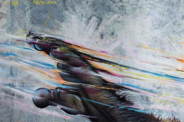 Bird&Smok - Kings of Colors 2016 (8)